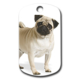 Dalis Pet Tag - Pug (Mops) Resimli Köpek Künyesi