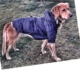 Kemique Büyük Irk - Lacivert- Poof By Kemique - Köpek MontuKöpek Paltosu - Köpek Kıyafeti