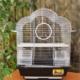 Qhpet Papatya Çatılı Krom Kuş Kafesi 34,5x28x45,5 cm