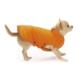 Croci Köpek Elbisesi Bright Ceket