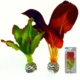 Biorb Plastik İpek Bitki İkili 15 Cm Sp01