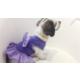 Dogi & Dog& Dog Mor Puantiye Elbise