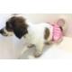 Dogi & Dog Pembe Puantiyeli Regl Kilotu , Köpek İç Çamaşırı