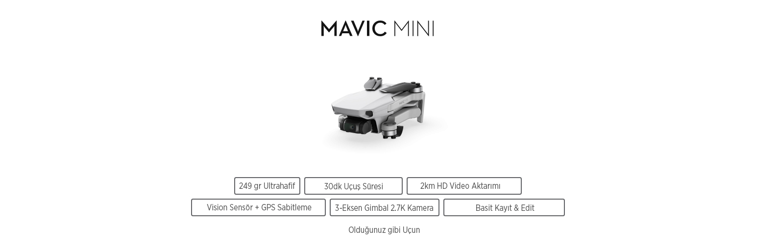 Mavic Mini Let creativity fly