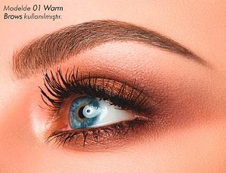 1301392-01-warm-brows