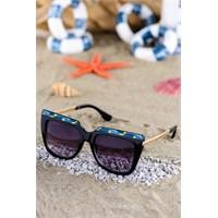 Silvio Monetti Kadın Güneş Gözlüğü Sm-Bf136r001