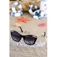 Silvio Monetti Kadın Güneş Gözlüğü 8521R001