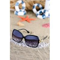 Silvio Monetti Kadın Güneş Gözlüğü Sm-1010R001