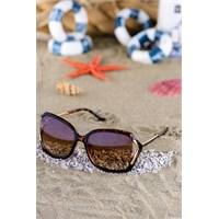 Silvio Monetti Kadın Güneş Gözlüğü Sm-1033R003