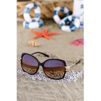 Silvio Monetti Kadın Güneş Gözlüğü Sm-1041R004