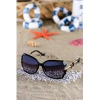 Silvio Monetti Kadın Güneş Gözlüğü Sm-1042R001
