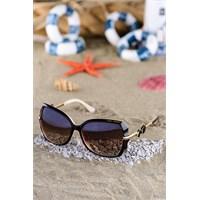 Silvio Monetti Kadın Güneş Gözlüğü Sm-1042R003