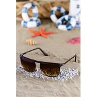 Silvio Monetti Erkek Güneş Gözlüğü Sm-1065R003