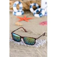 Silvio Monetti Erkek Güneş Gözlüğü Sm-1067R005