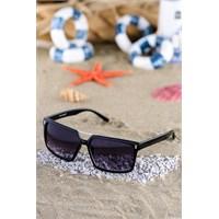Silvio Monetti Erkek Güneş Gözlüğü Sm-1081R001