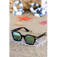 Silvio Monetti Kadın Güneş Gözlüğü Sm-1083R002