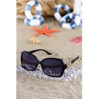 Silvio Monetti Kadın Güneş Gözlüğü Sm-1510R001