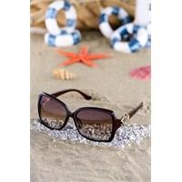 Silvio Monetti Kadın Güneş Gözlüğü Sm-1510R002