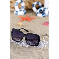 Silvio Monetti Kadın Güneş Gözlüğü Sm-1538R001