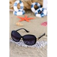 Silvio Monetti Kadın Güneş Gözlüğü Sm-1550R001