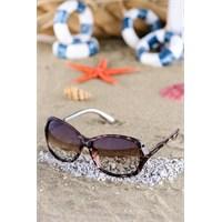 Silvio Monetti Kadın Güneş Gözlüğü Sm-1577R003