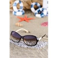 Silvio Monetti Kadın Güneş Gözlüğü Sm-1577R004