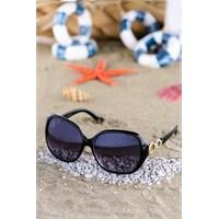 Silvio Monetti Kadın Güneş Gözlüğü Sm-2110R001