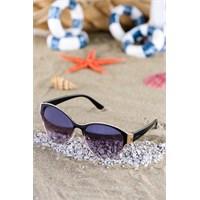 Silvio Monetti Kadın Güneş Gözlüğü Sm-3583R001