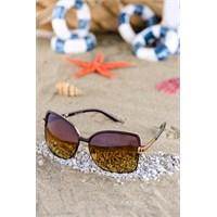 Silvio Monetti Kadın Güneş Gözlüğü Sm-5805R004