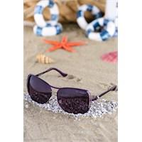 Silvio Monetti Kadın Güneş Gözlüğü Sm-5818R003