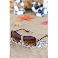 Silvio Monetti Kadın Güneş Gözlüğü Sm-5818R004