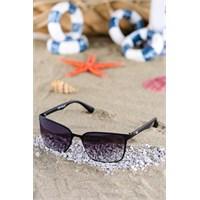 Silvio Monetti Kadın Güneş Gözlüğü Sm-6211R001