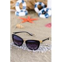 Silvio Monetti Kadın Güneş Gözlüğü Sm-8262R001