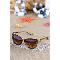 Silvio Monetti Kadın Güneş Gözlüğü Sm-8262R004