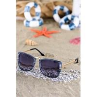 Silvio Monetti Kadın Güneş Gözlüğü Sm-8423R001