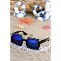 Silvio Monetti Kadın Güneş Gözlüğü Sm-8533R002