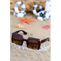 Silvio Monetti Kadın Güneş Gözlüğü Sm-8533R003