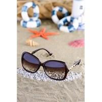 Silvio Monetti Kadın Güneş Gözlüğü 815R002