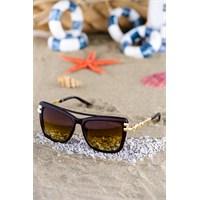 Silvio Monetti Kadın Güneş Gözlüğü Sm-108R002