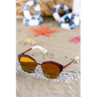 Silvio Monetti Kadın Güneş Gözlüğü Sm-9282R005