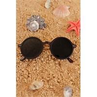Morvizyon Clariss Marka Kahverengi Renk Tasarımlı Bayan Gözlük