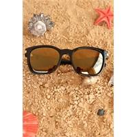 Morvizyon Clariss Marka Siyah Çerçeve Kahverengi Renkli Cam Tasarımlı Unisex Güneş Gözlük Modeli
