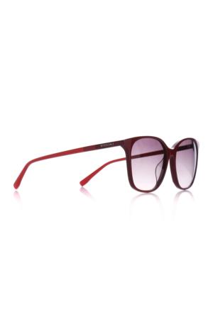 Lacoste Lcc 787 615 Bayan Güneş Gözlüğü