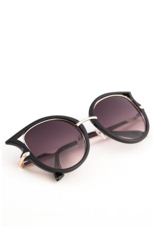 Polo55 Kadın Güneş Gözlüğü - Polo17Xr8528Ar001