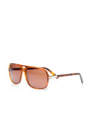 Pierre Cardin Pc 6155 Bmm Erkek Güneş Gözlüğü