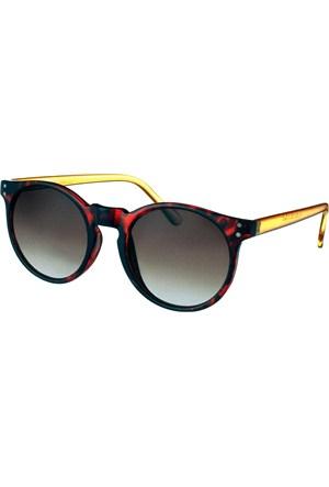 Paco Loren Pl1062col03 Kadın Güneş Gözlüğü