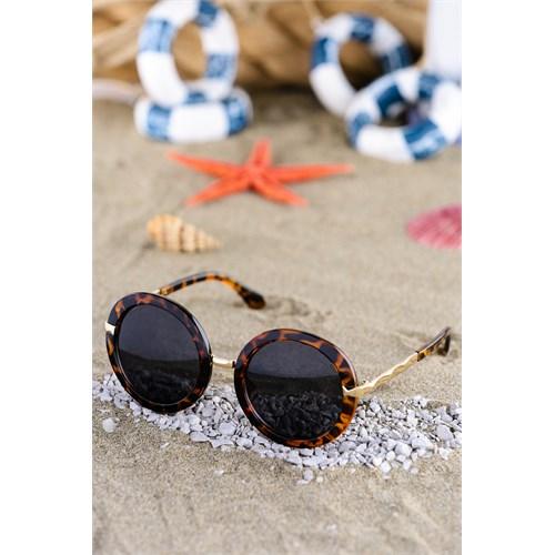 Silvio Monetti Kadın Güneş Gözlüğü Sm-59022R004