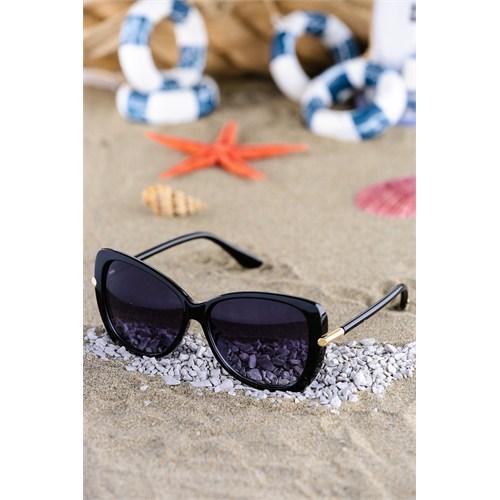 Silvio Monetti Kadın Güneş Gözlüğü Sm-1529R001