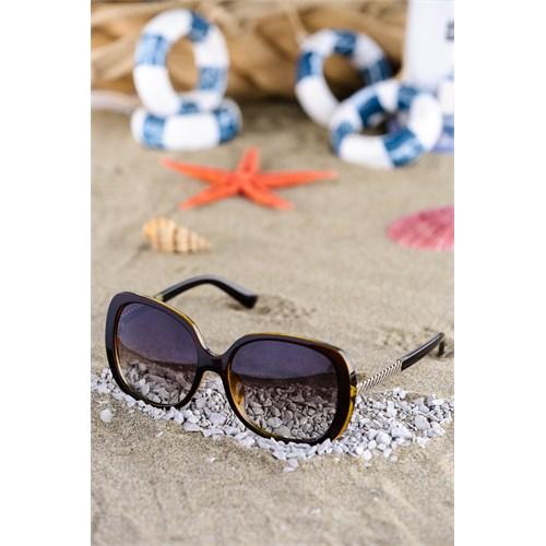 Silvio Monetti Kadın Güneş Gözlüğü Sm-781R002