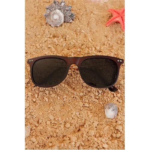 Morvizyon Clariss Marka Kahverengi Çerçeve Renk Tasarımlı Bayan Gözlük